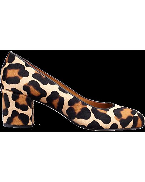The Heel - Leopard